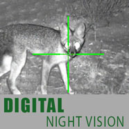 DIgital Night Vision