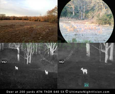 Image of thermal during the day viewing deer at 200 yards atn thor 640 5x